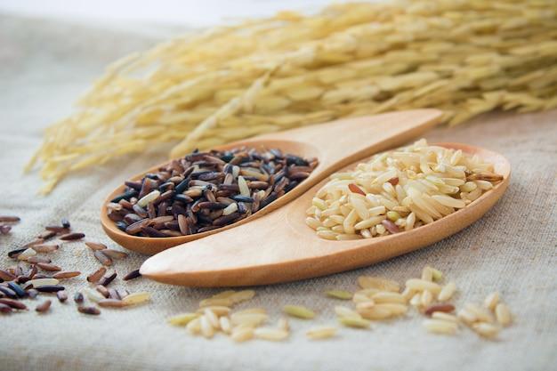 Черный рис и коричневый рис в ложках выбранный фокус - винтажный эффект