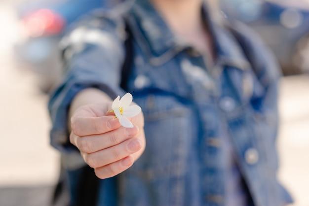 白い花を持つ女性の手