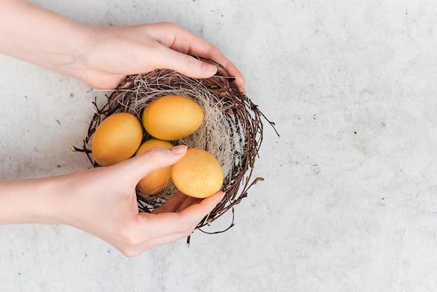 春のイースターの背景。女性の手はカラフルなイースターエッグと巣を保持します。水平トップビューの抽象的な構成。抽象的な背景