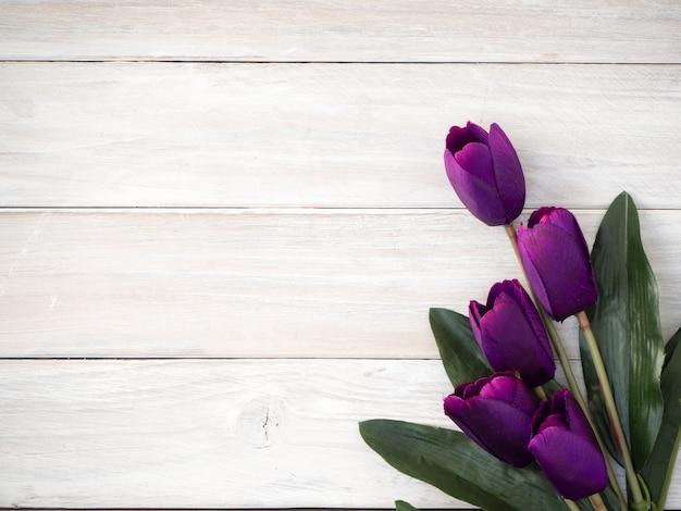 春のチューリップの花、古い木
