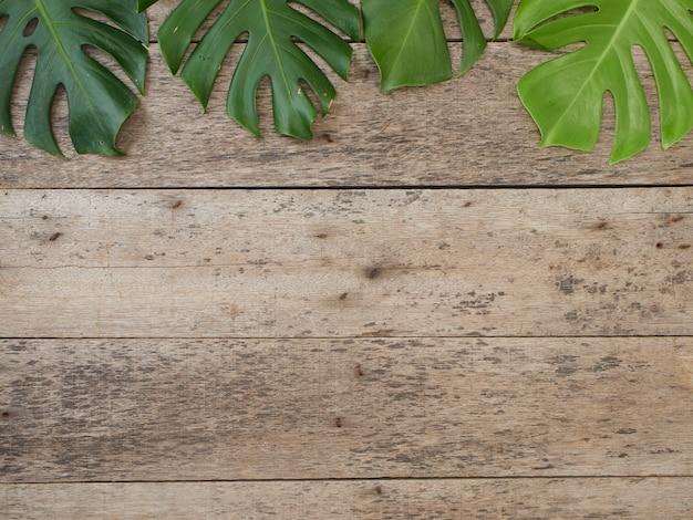 熱帯のフレームは、古い木製の背景にモンステラを葉します。テキスト用のスペースフラットレイ、トップビュー