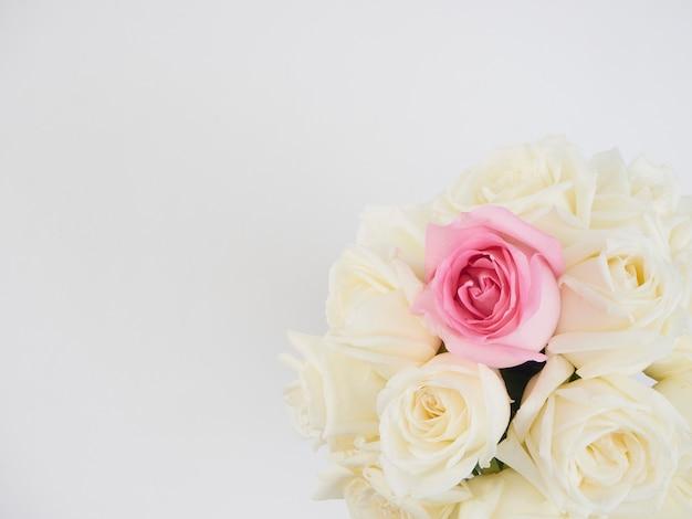 Цветы белых роз и один цветок розовой розы