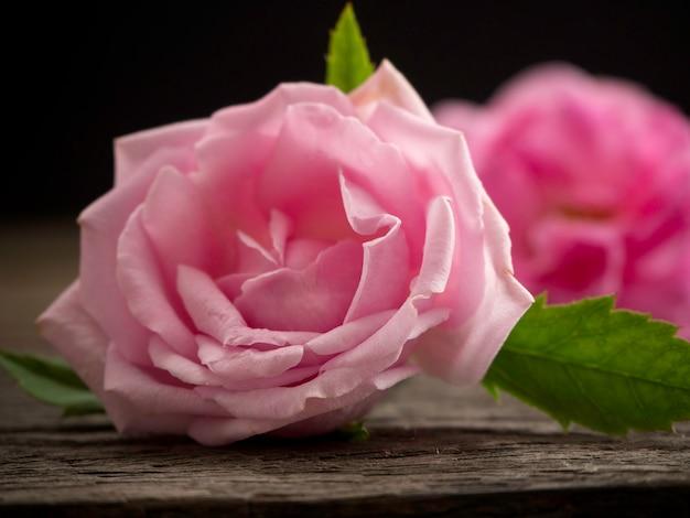 古い木の床にピンクのバラ。