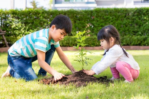 Азиатский брат и сестра родного брата засаживая молодое дерево на черной почве совместно как мир спасения в саде на доме на летний день. посадка деревьев.