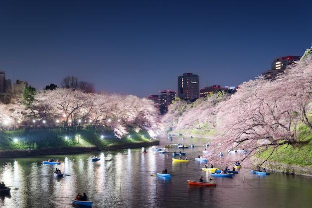 背景として東京市を咲かせる大規模な桜の夜景。