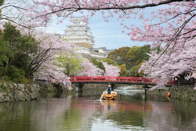 日本の大阪近郊の兵庫で春の桜が美しい姫路城。