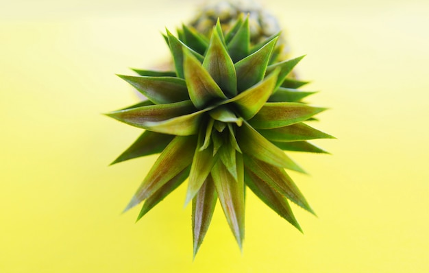 黄色の背景に新鮮なパイナップル夏の果物を閉じる
