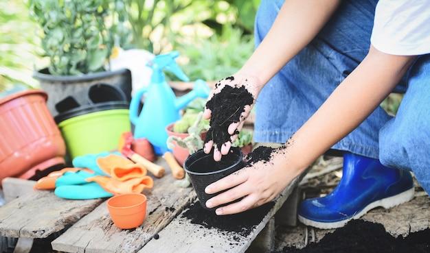 若い女性の苗木を植えるガーデニングは、環境を助ける手の女性と一緒に鉢植えの土壌で成長しています。