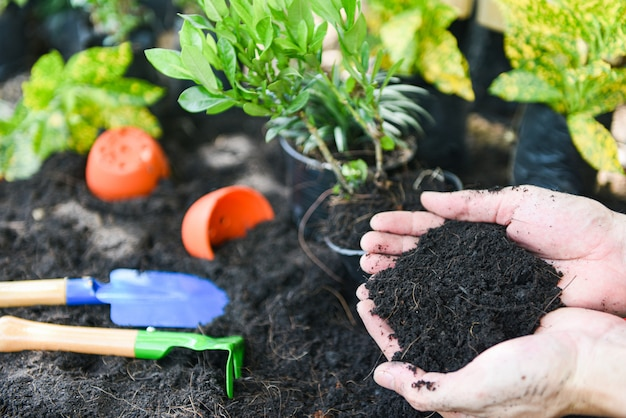 庭に花を植えるために手に土。裏庭でガーデニングツール工場の植物の成長