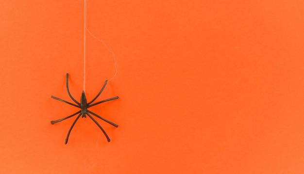 オレンジ色の表面に黒いクモ
