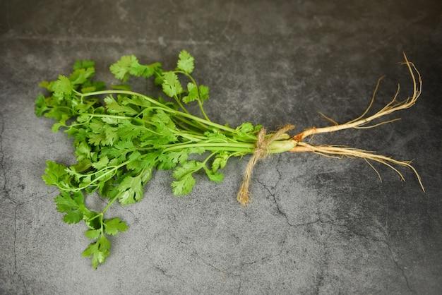 食品野菜スパイスハーブの新鮮なコリアンダーの葉の束