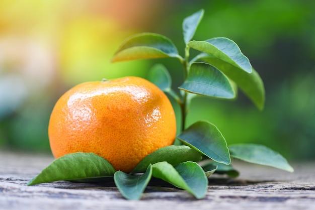 オレンジ色の果物と葉の緑の庭の背景を持つ木製