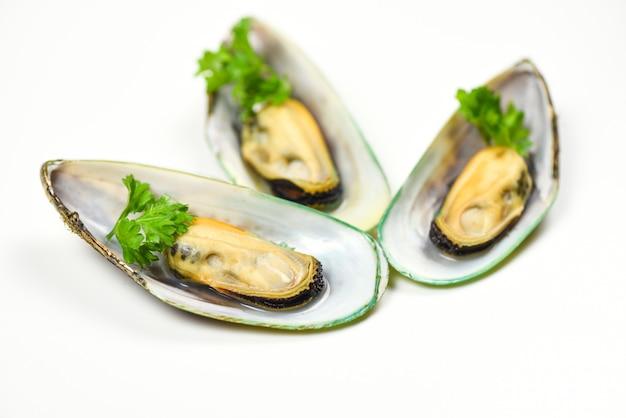 ムール貝、パセリと白、緑のムール貝の殻で隔離