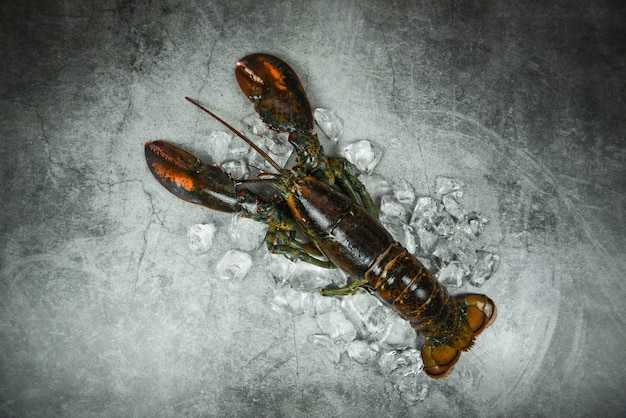 Свежие моллюски из омаров в ресторане с морепродуктами для приготовления пищи / лед из омаров на черном каменном столе