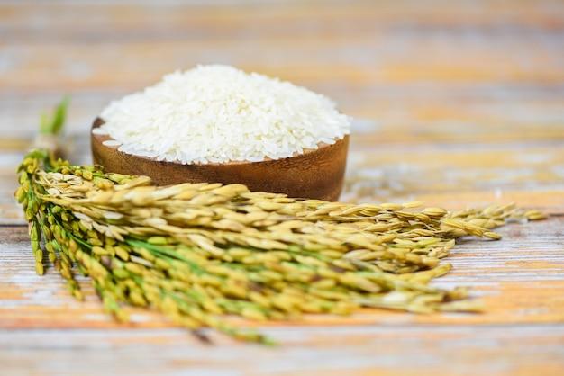 ボウルと木製のタイ米白-アジアの食糧のための水田農産物の耳と生のジャスミン米粒