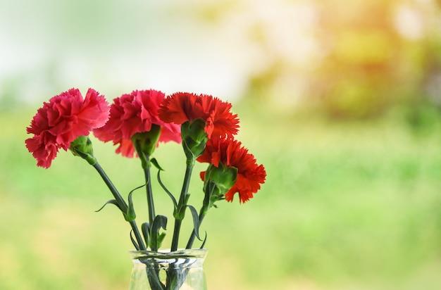ガラスの瓶と自然の緑の背景のカーネーションの花