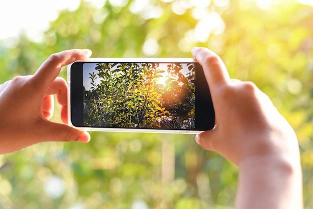 自然の緑の木と夕日のボケ背景の写真を撮るスマートフォンを持つ女性の手/携帯電話の写真とビデオ
