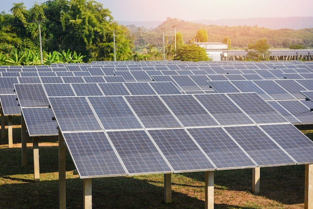 緑の木と太陽の光が反射するソーラーファームのソーラーパネルの表示/太陽電池エネルギーまたは再生可能エネルギー