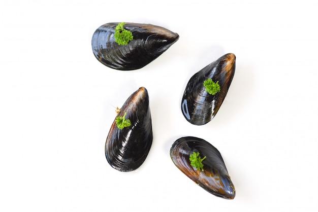 ムール貝の白い背景-パセリとムール貝の緑