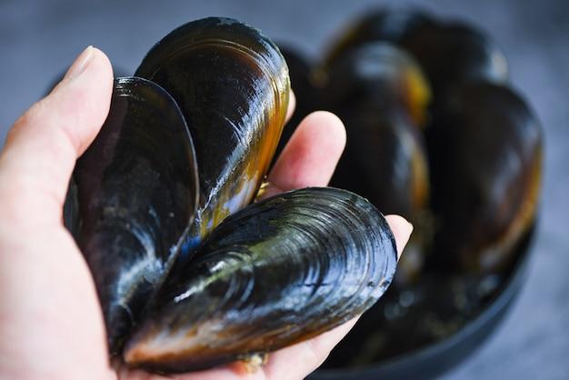 生のムール貝を手に-レストランで、または市場で販売されているムール貝の殻付きの新鮮な魚介類