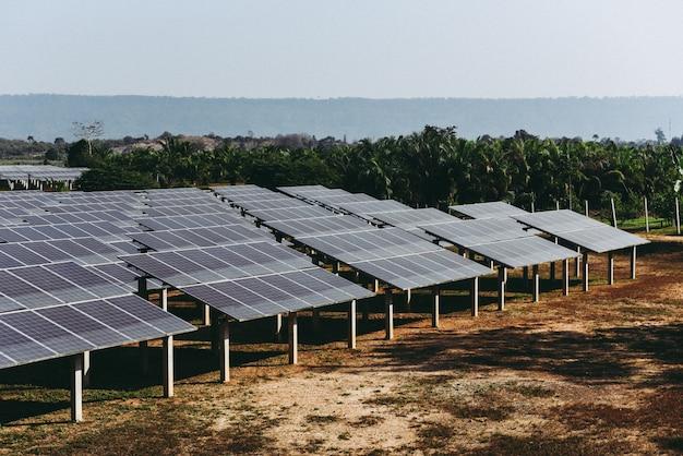 緑の木と太陽の光が反射するソーラーファームのソーラーパネル。太陽電池エネルギーまたは再生可能エネルギーの概念