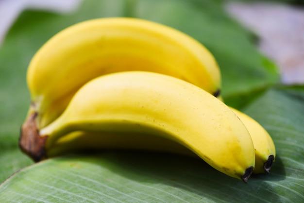 夏の果物のバナナの葉の背景にバナナ