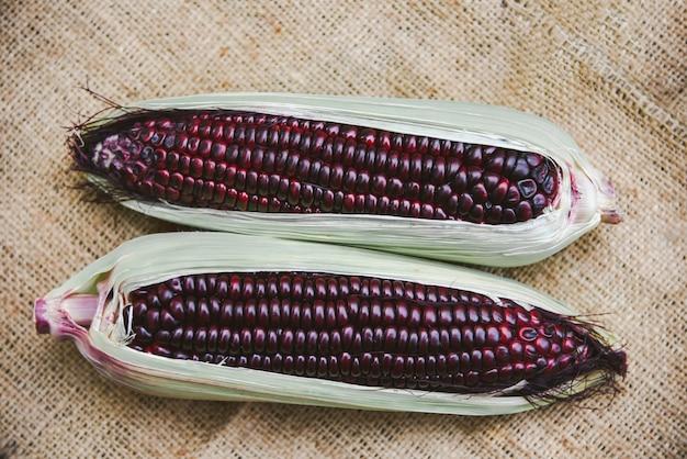 新鮮な甘い紫色のトウモロコシ。サイアムルビークイーンまたは穂軸のスイートコーン