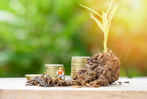 土壌に生育する植物と土壌を掘る農園