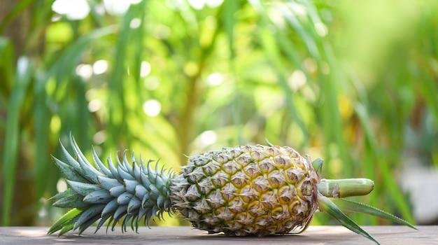 新鮮なパイナップルの自然 - クローズアップパイナップルトロピカルフルーツ