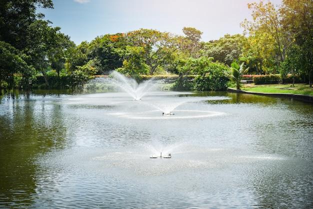 Фонтан в водном пруду зеленого парка