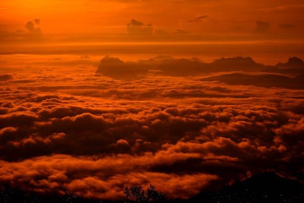 赤い空日の出霧霧覆われた森の風景山劇的な