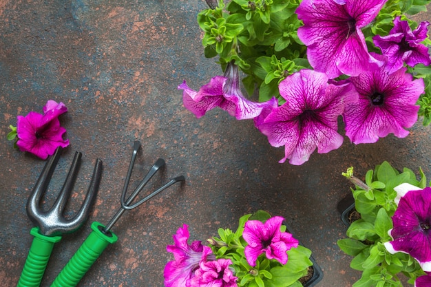 木製の背景にバスケット、麦わら帽子、ガーデンツールのペチュニアの花。