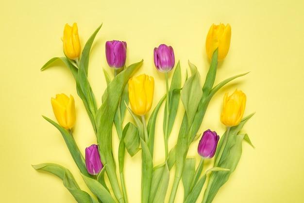 Желтые и фиолетовые цветы тюльпаны в букете на желтом фоне, праздничный весенний фон
