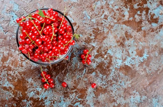 熟した新鮮な赤スグリの実