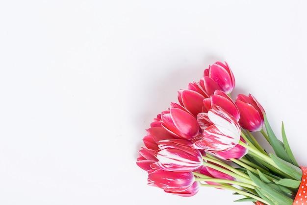 白地に赤いチューリップの花束