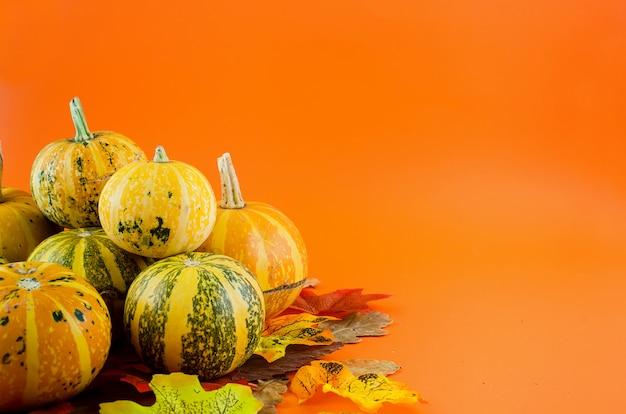 Осенний фон с тыквами и листьями