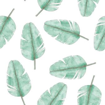 熱帯植物の葉