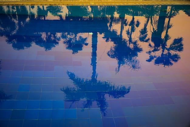 Тень кокосовой пальмы на голубой воде в бассейне с красивым солнечным светом