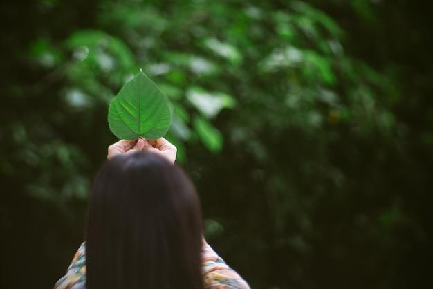 美しい緑の葉を保持している女性