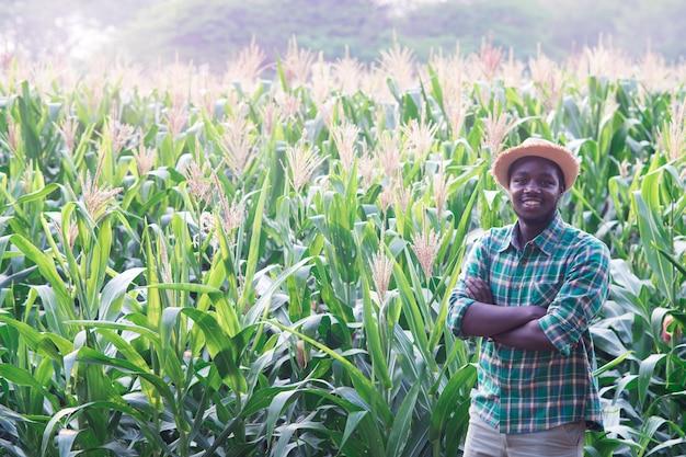 トウモロコシ農園のフィールドに立っている帽子を持つアフリカの農家