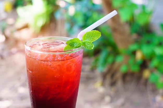 自然の中の緑のペパーミントと赤いローゼルジュース。