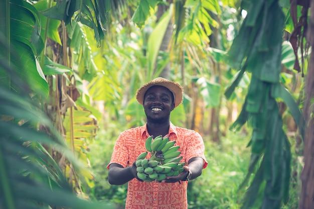 Африканский фермер держит банан на органической ферме