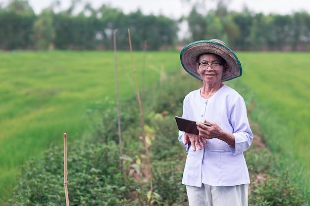 緑の農場でタブレットを使用して笑顔の古いアジアの女性農家