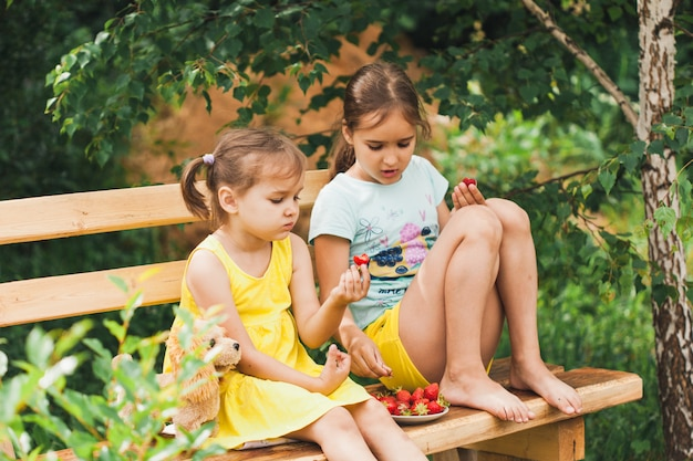 イチゴ、ベリーと夏、おいしいジューシーで香りのよいイチゴのプレート、食べ物、子供とビタミン、飲み物とスムージー、子供たちが食べる、喜び、コミュニケーション、姉妹