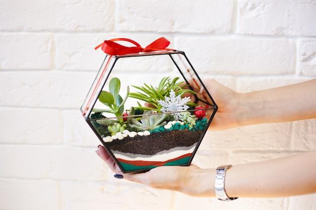 フロラリウム、多肉植物の組成、石、砂とガラス、インテリアの要素、家の装飾、クリスマスデラー、新年のプレゼント