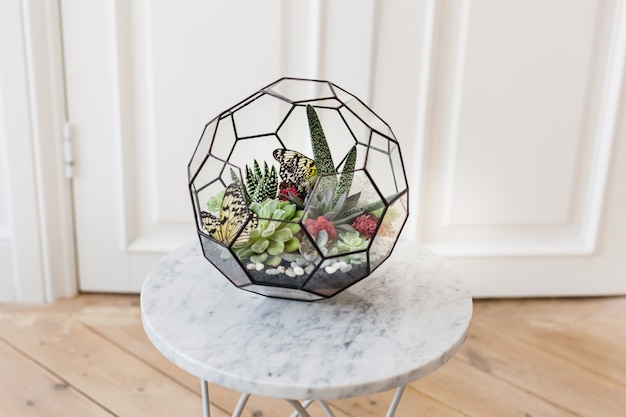 Флорариум - композиция из суккулентов, камня, песка и стекла, элемент интерьера, домашний декор, стеклянный террариум
