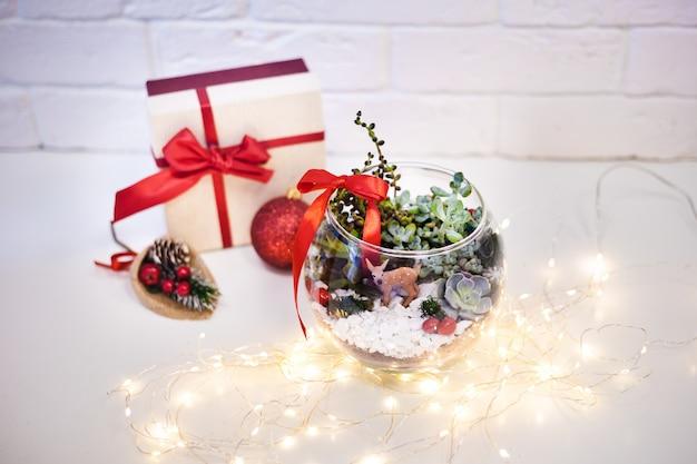 Флорариум - композиция из суккулентов, камня, песка и стекла, элемент интерьера, домашний декор, рождественская ёлка, подарок