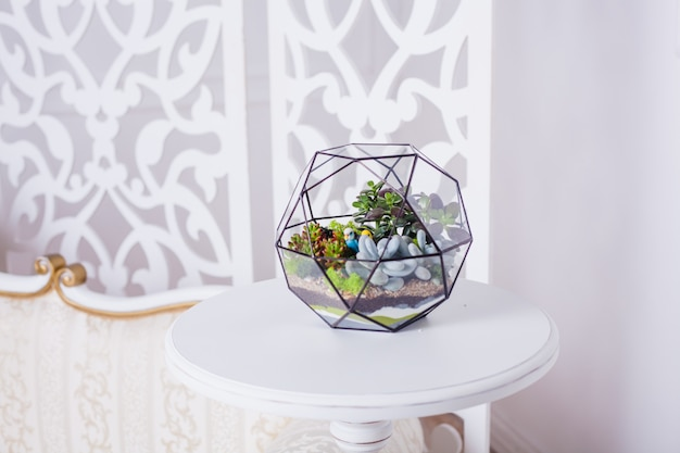 多肉植物、石、砂、ガラスのフロラリウム組成、インテリアの要素、家の装飾、ガラステラリウム