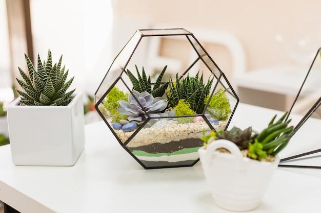 フロラリウム-多肉植物、石、砂、ガラスの組成、インテリアの要素、家の装飾、ガラステラリウム