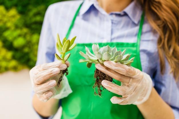 Стеклянная плесень для выращивания растений и оформления интерьера, песка, земли, суккулентов, кактусов и растений, комнатных растений